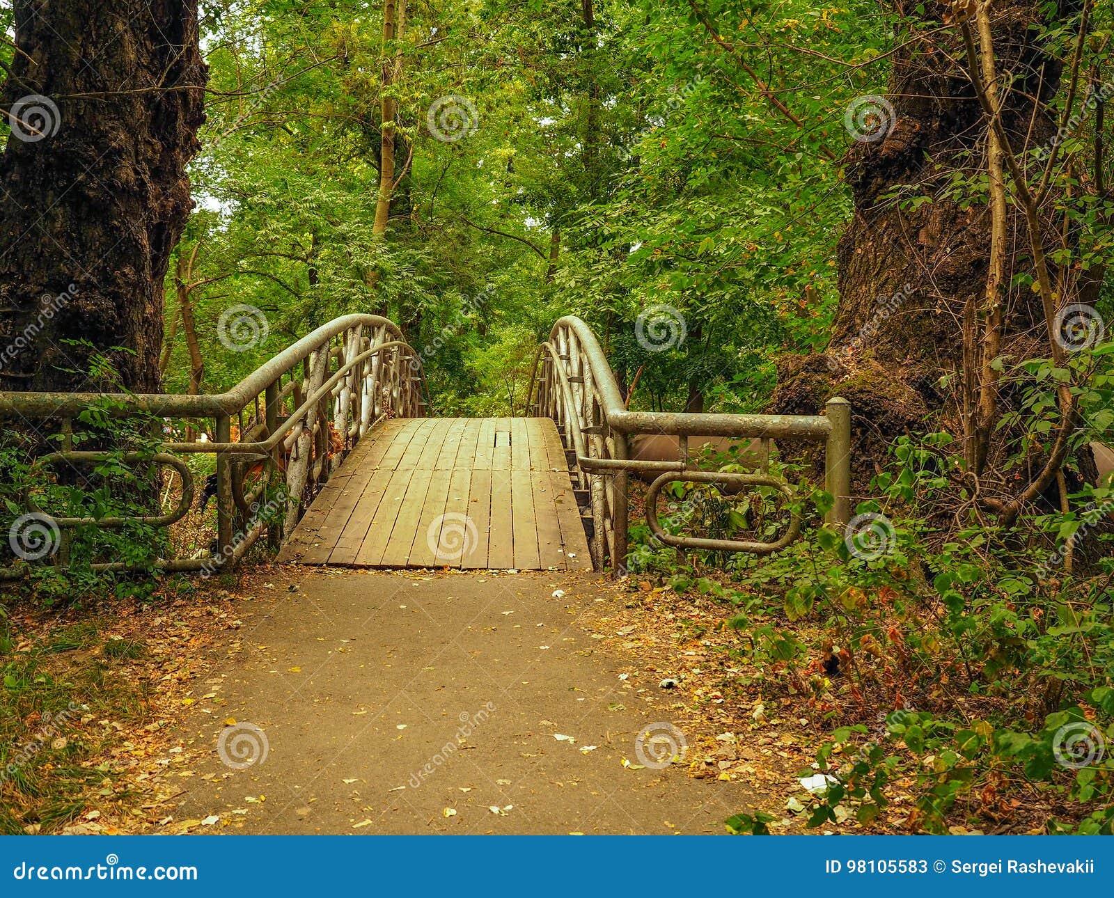 Puente viejo abandonado paisaje del parque, rastro