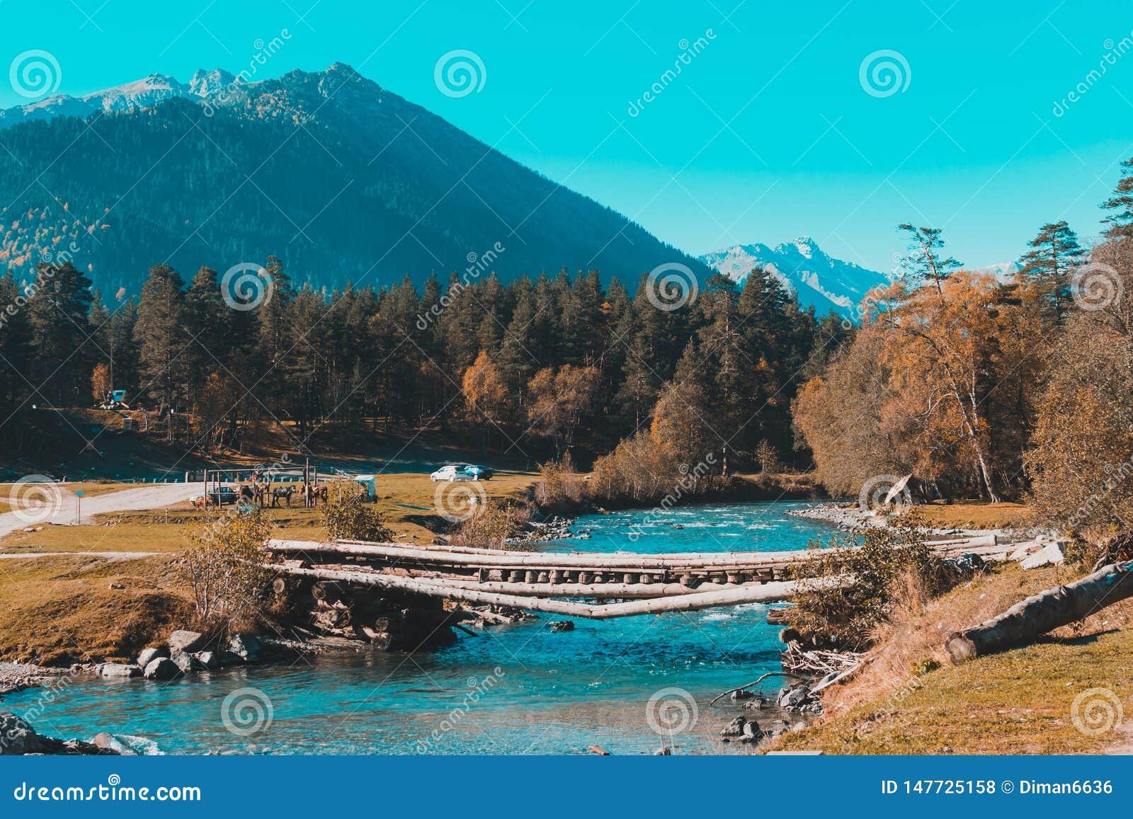Puente viejo sobre el r?o en el campo