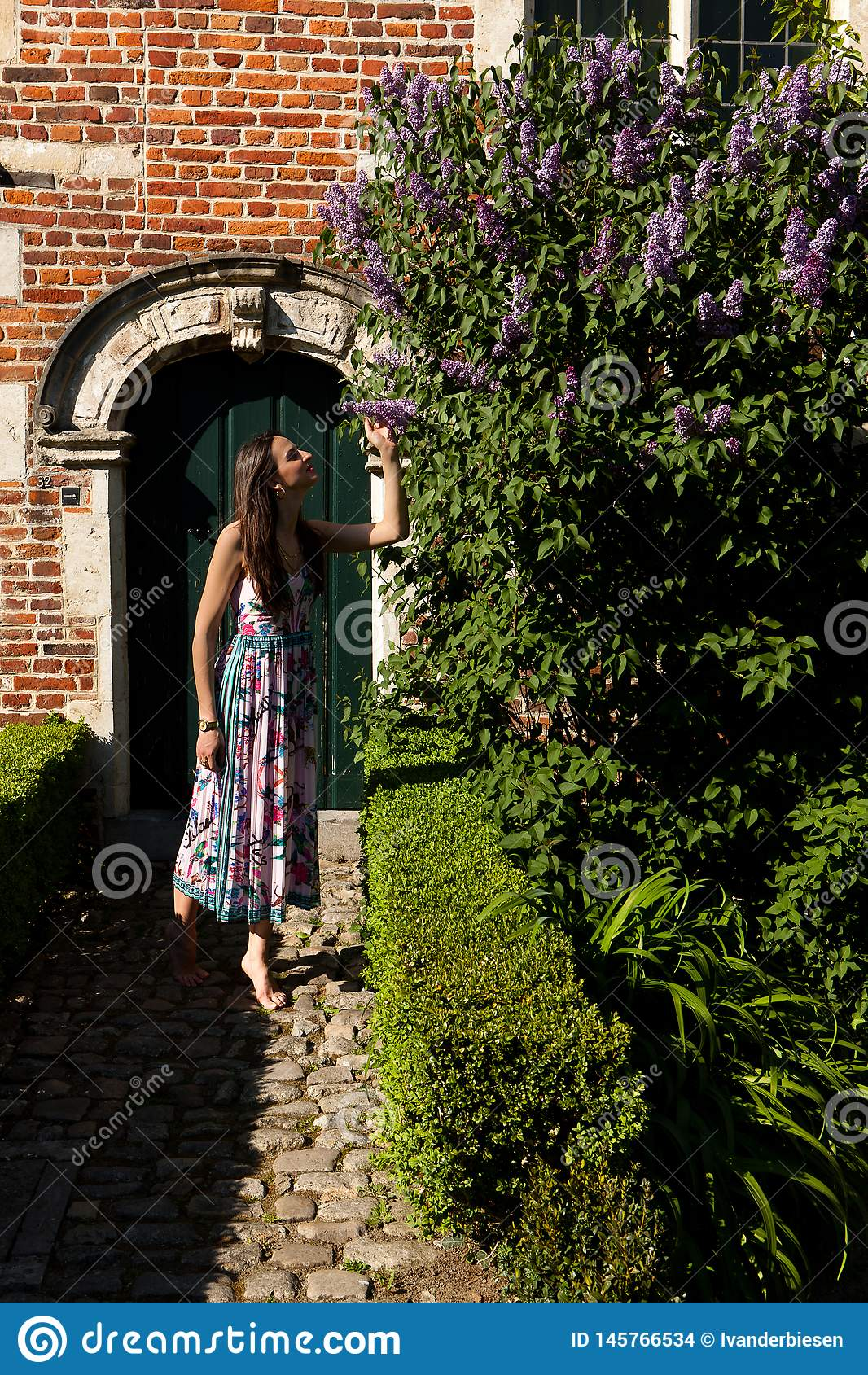 Puerta de la pared del syringa de la lila del sol de la mujer, Groot Begijnhof, Lovaina, Bélgica