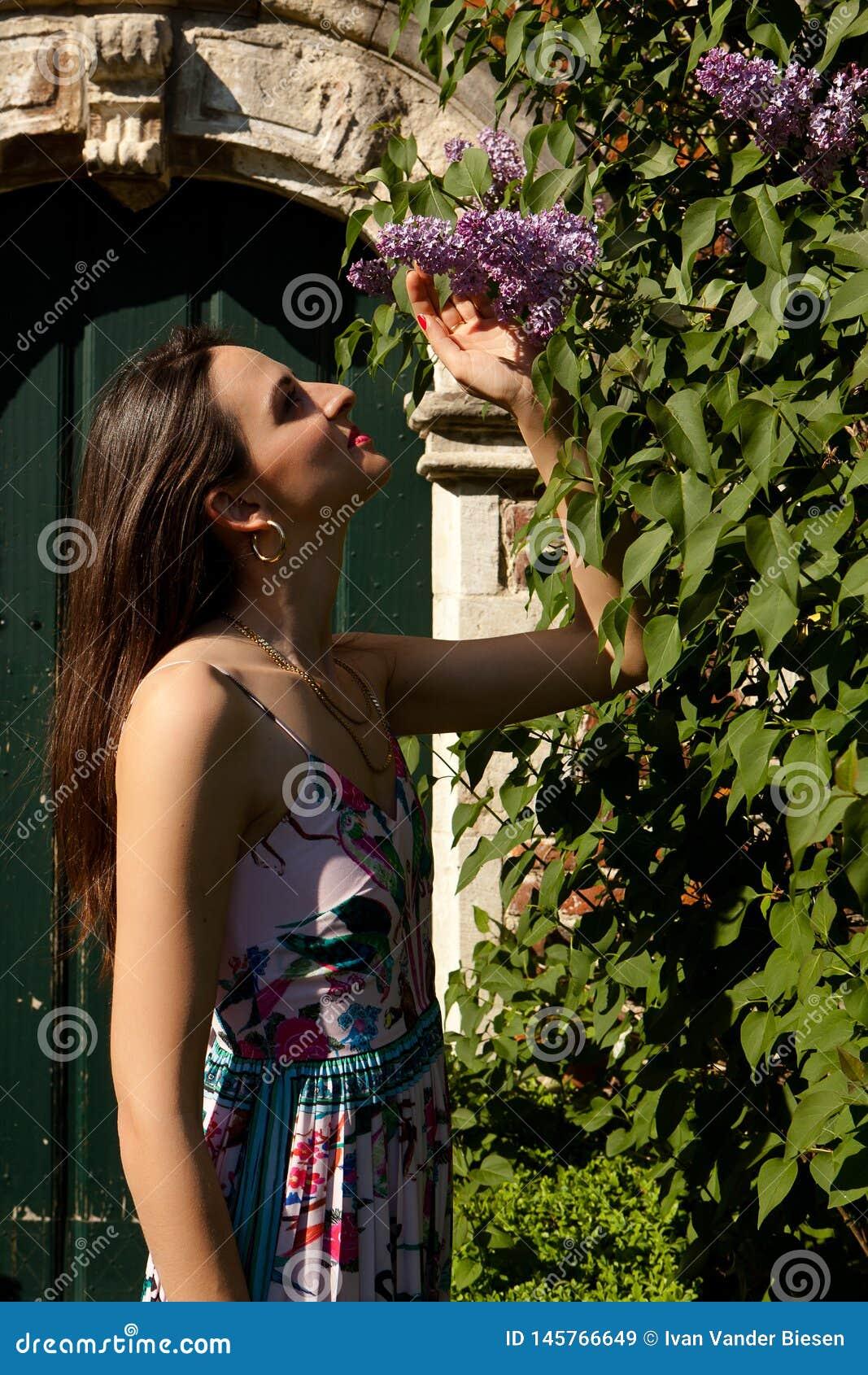 Puerta de la pared del syringa de la lila del sol de la mujer, Groot Begijnhof, Lovaina, B?lgica
