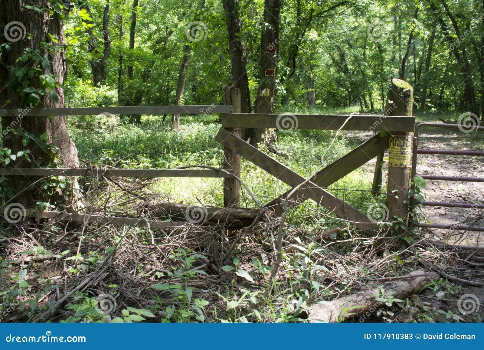 Puerta a través del camino inusitado