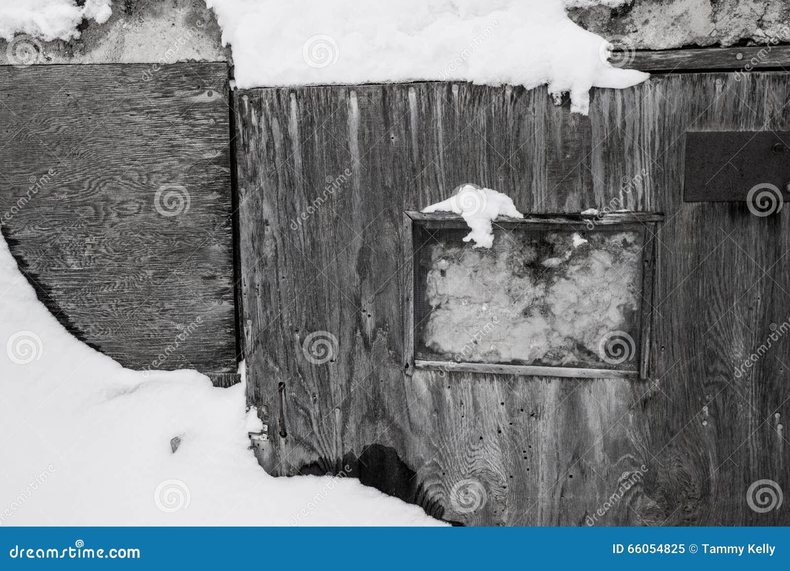 Puerta vieja blanco y negro despu s de una tormenta de la for Como barnizar una puerta vieja