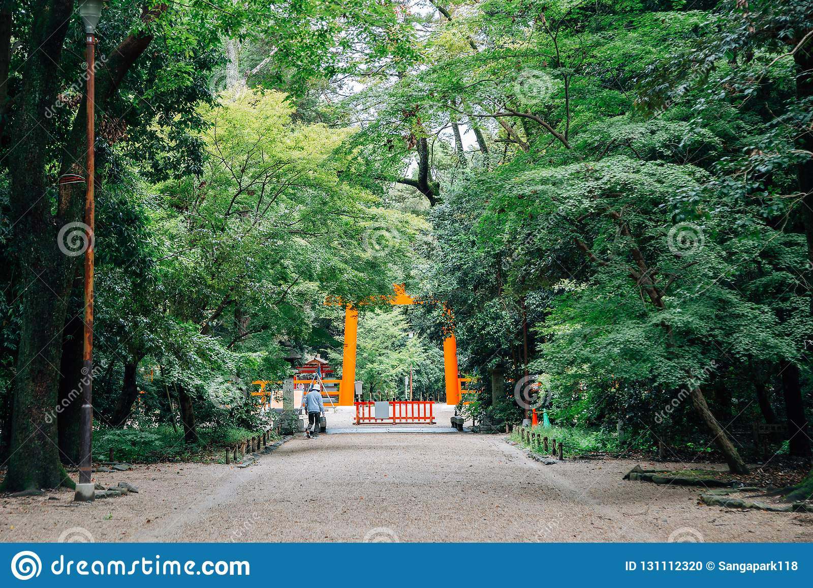 Puerta y bosque del torii de la capilla de Shimogamo en Kyoto, Japón
