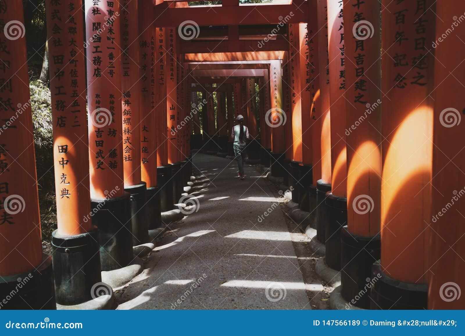 Puertas de Torii, Jap?n