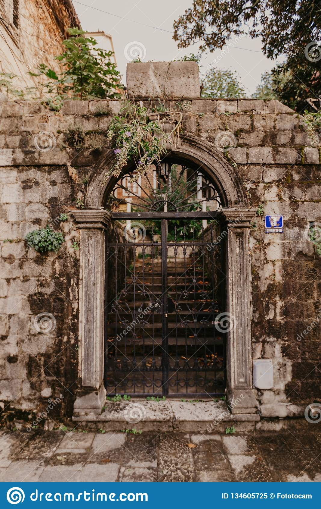 Puertas del hierro del vintage