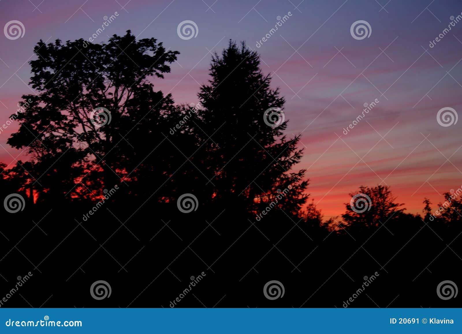 Puesta del sol colorida