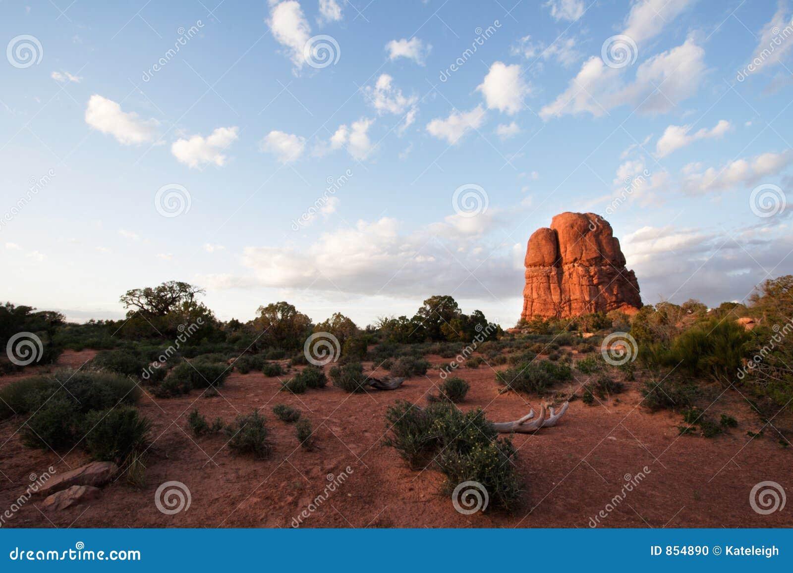 Puesta del sol de la mota del desierto