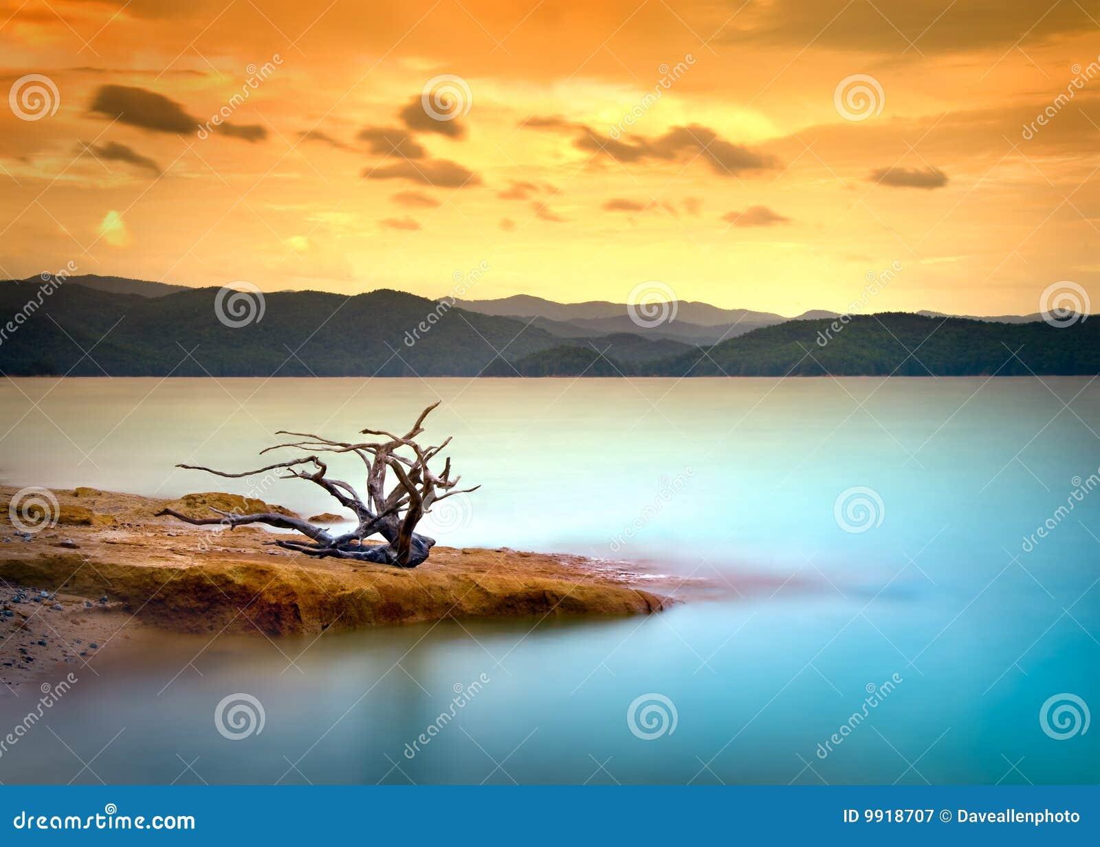 Puesta del sol del Driftwood del lago mountain con agua y el cielo
