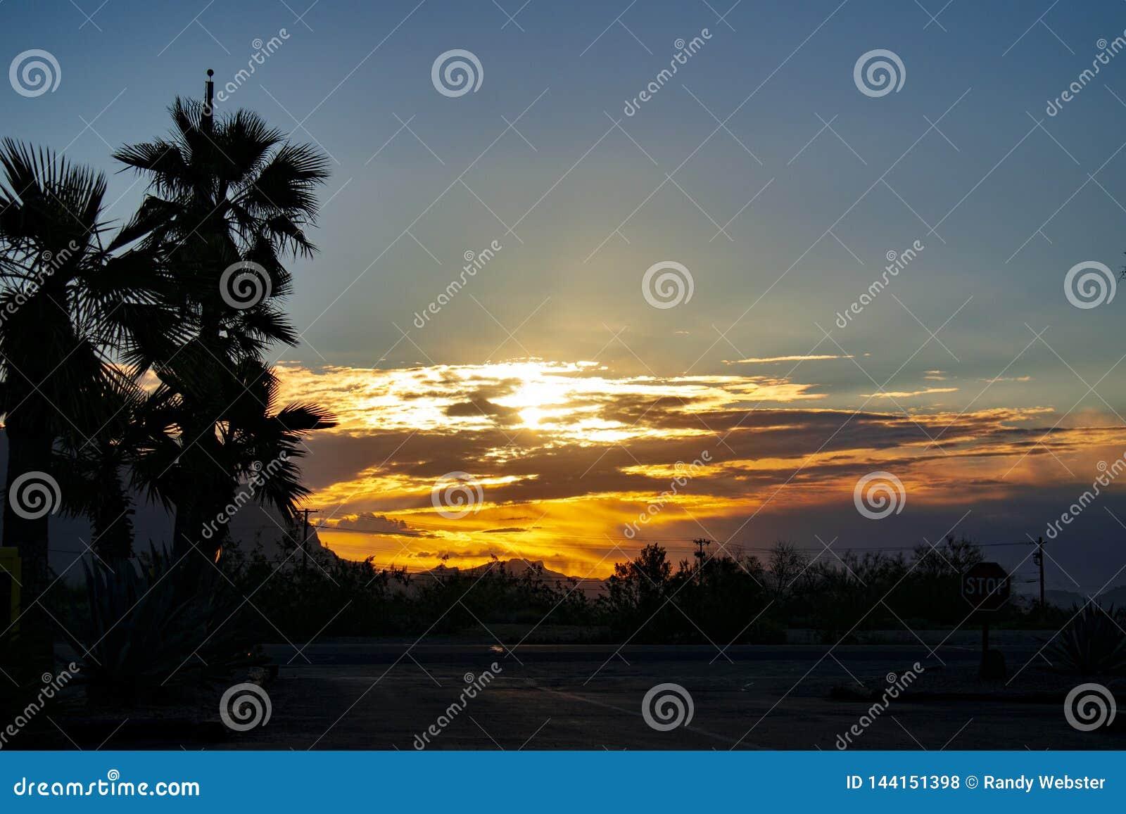 Puesta del sol del desierto de Arizona