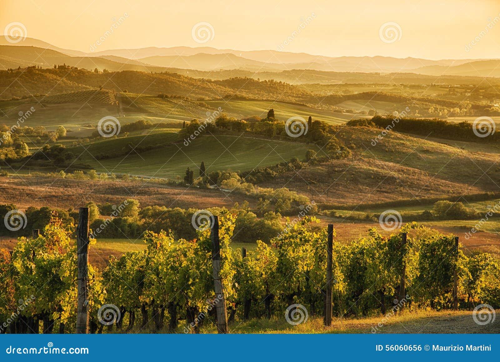 Puesta del sol en Chianti