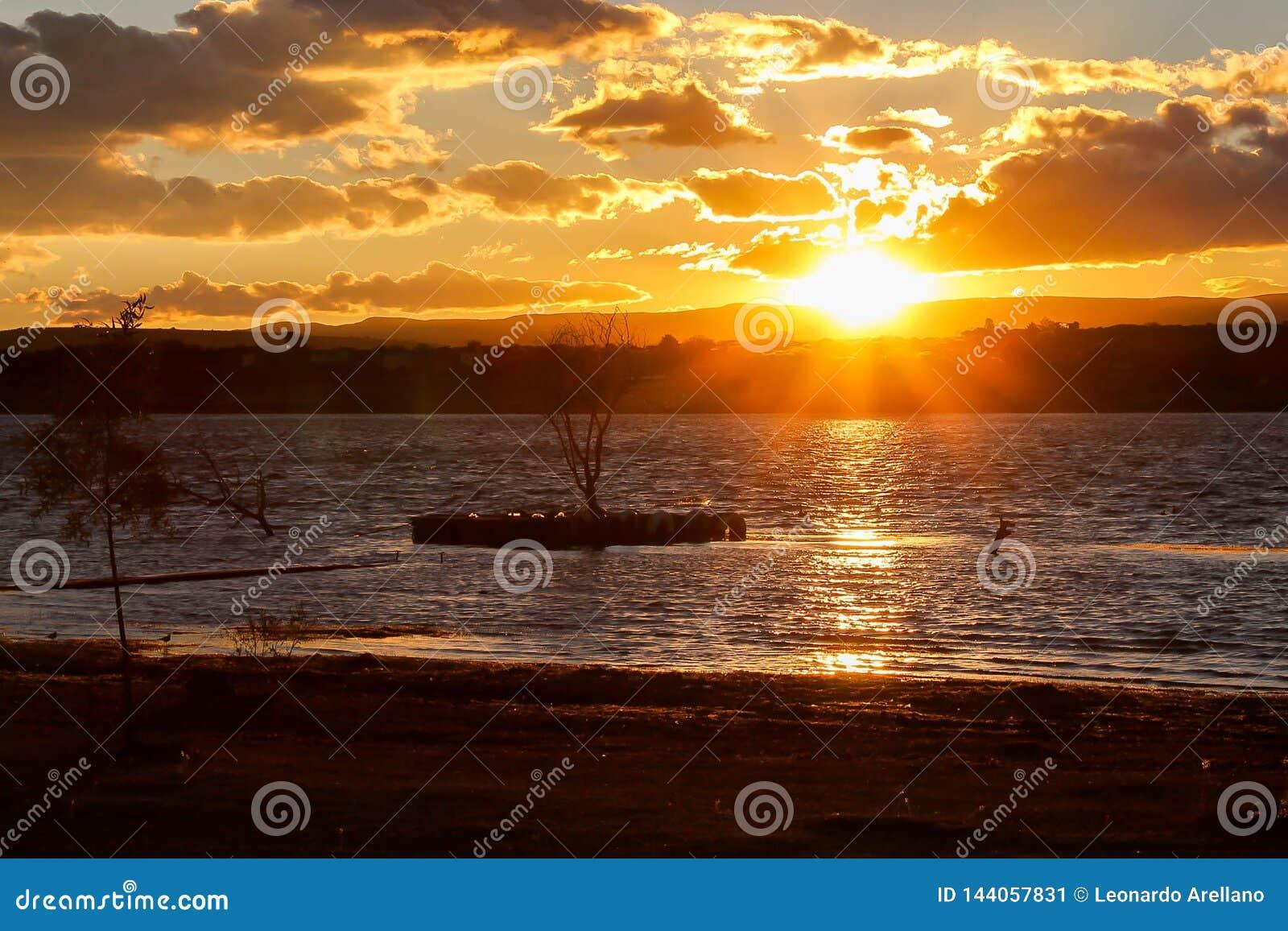 Puesta del sol en el lago y el campo