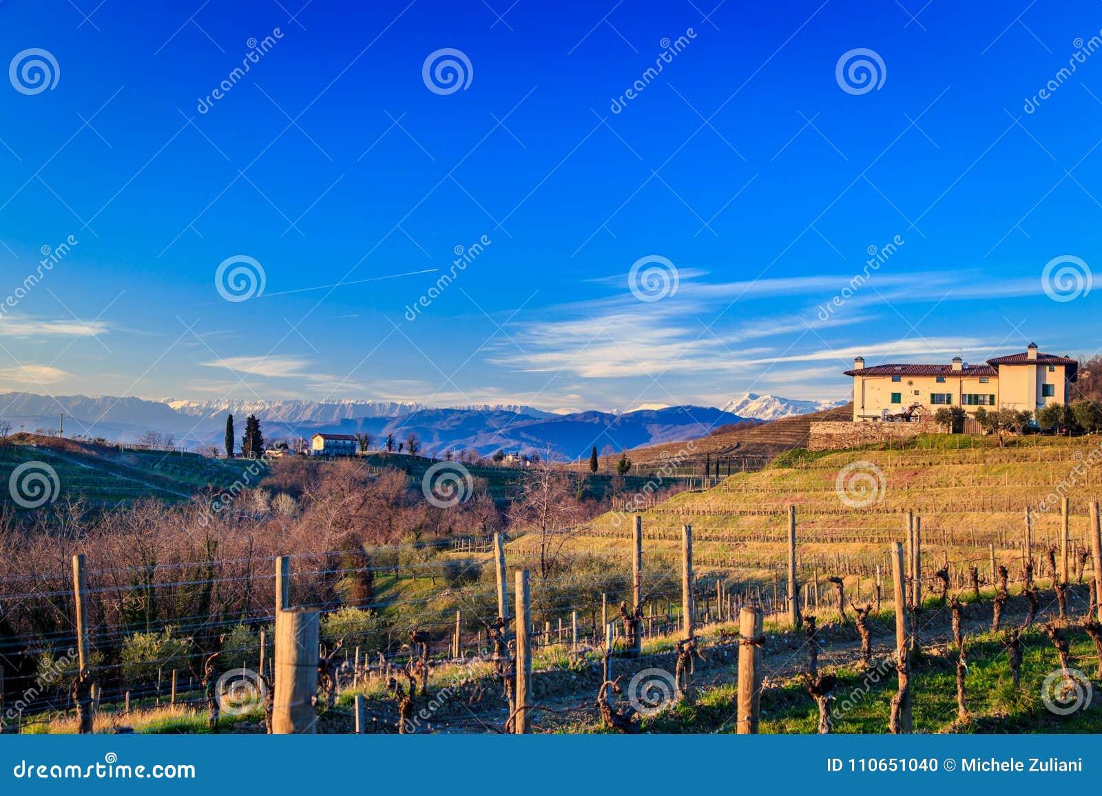 Puesta del sol en los viñedos de Rosazzo