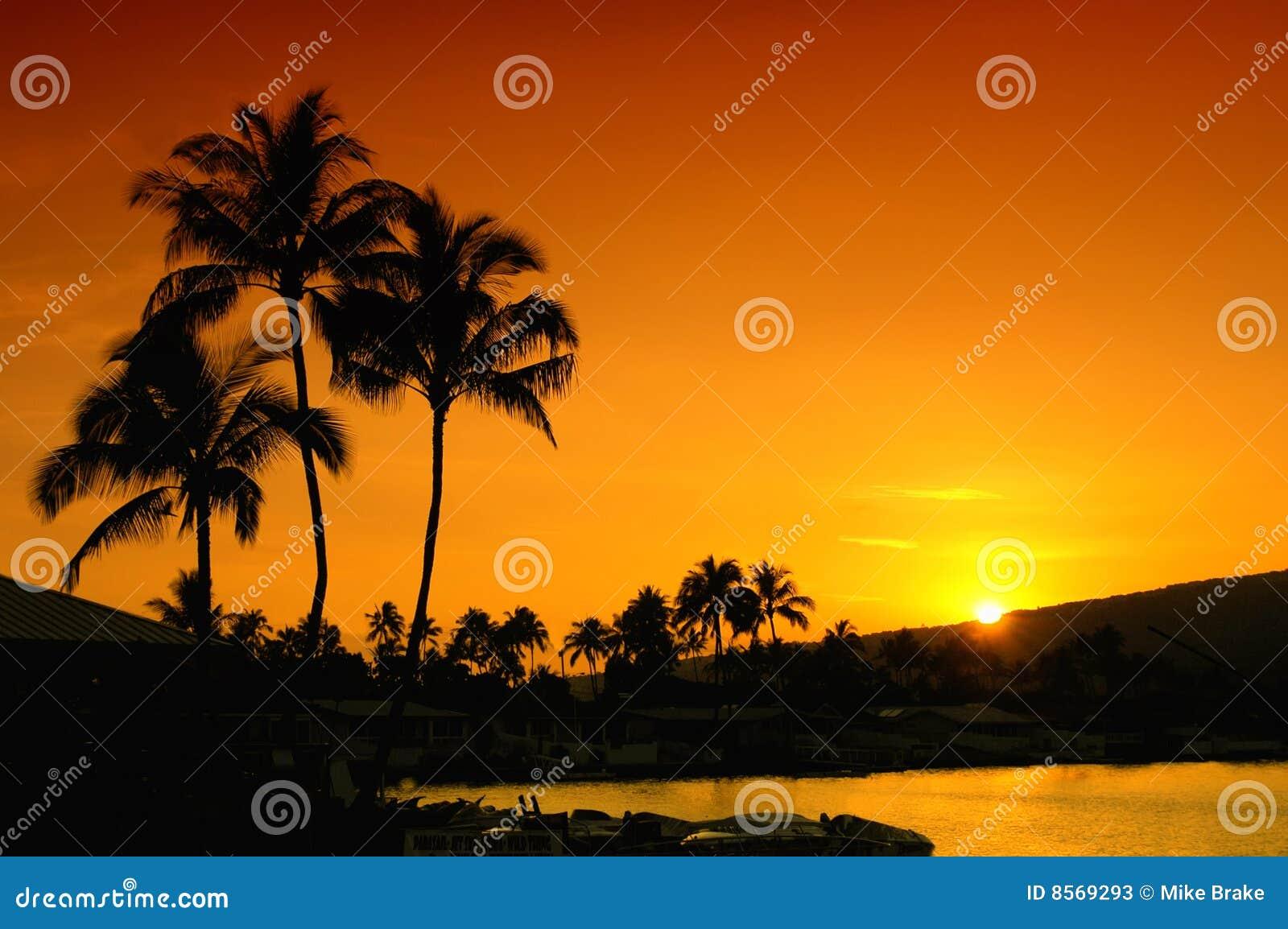 Puesta del sol en Oahu