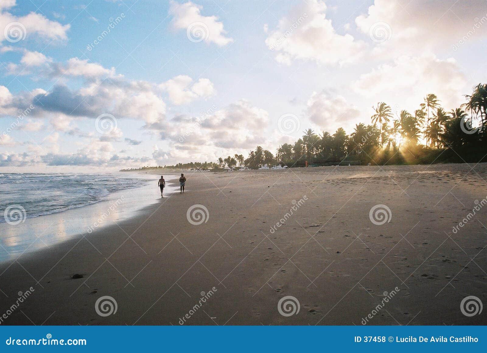 Download Puesta Del Sol En Sauipe - Grano Visible De La Película. Foto de archivo - Imagen de cielo, tropical: 37458