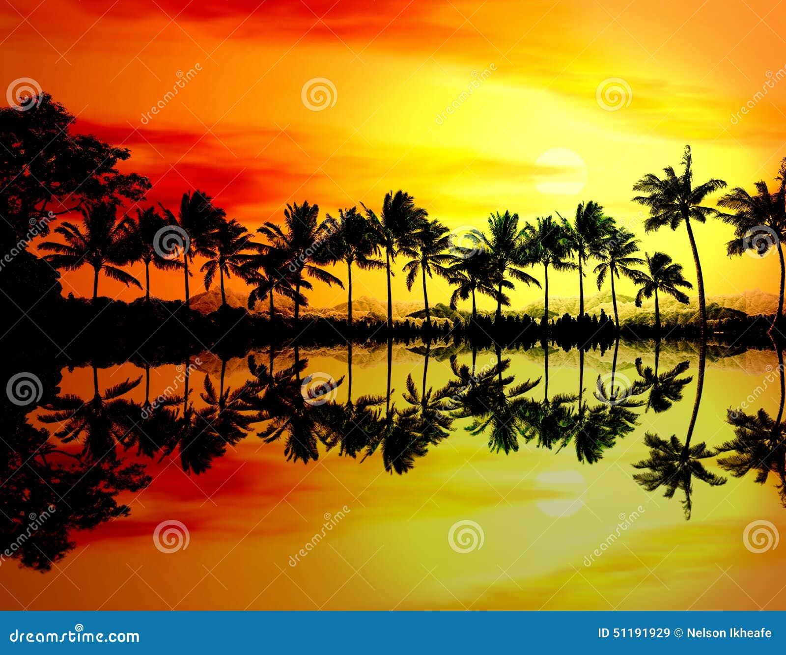 Puesta del sol o salida del sol de la playa con las palmeras tropicales