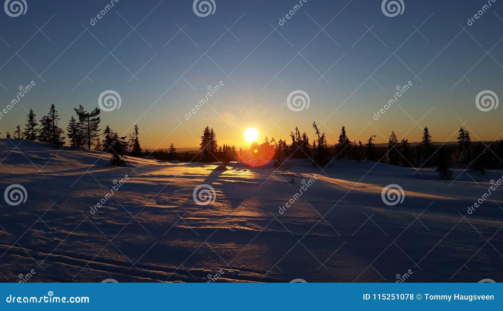 Puesta del sol del país de las maravillas del invierno en Løten, Noruega