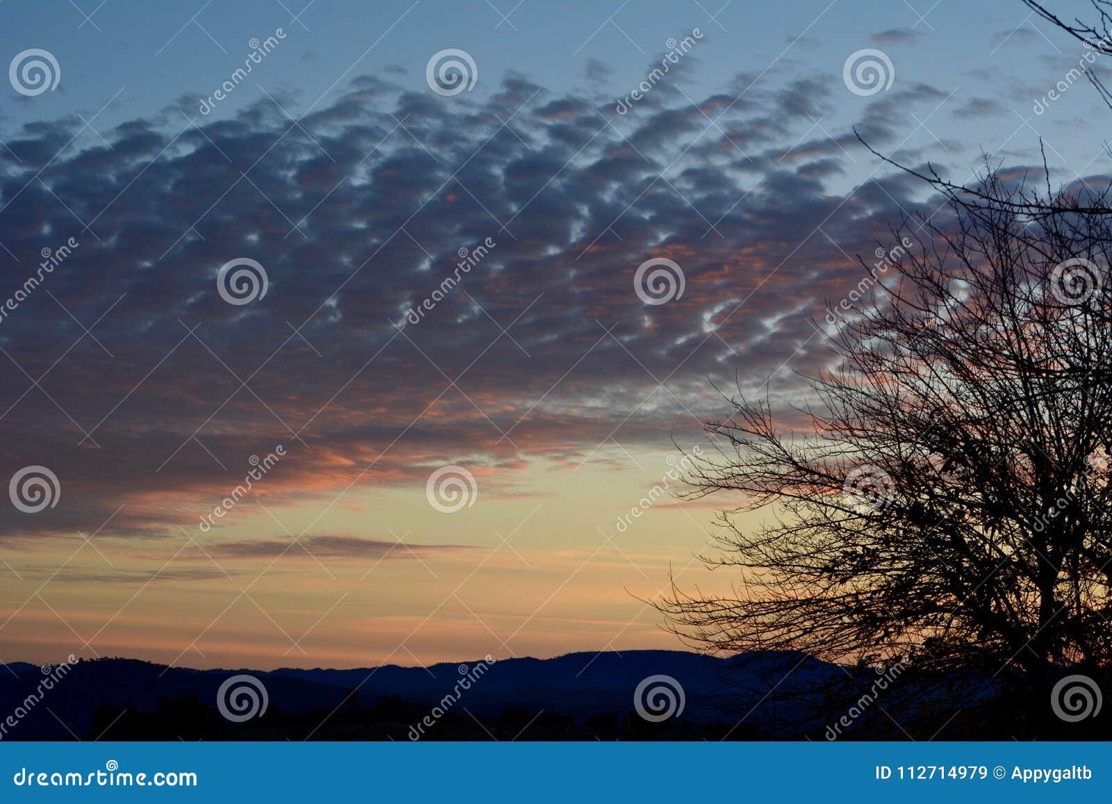 Puesta del sol rural del rancho del país vinícola con los árboles y las nubes