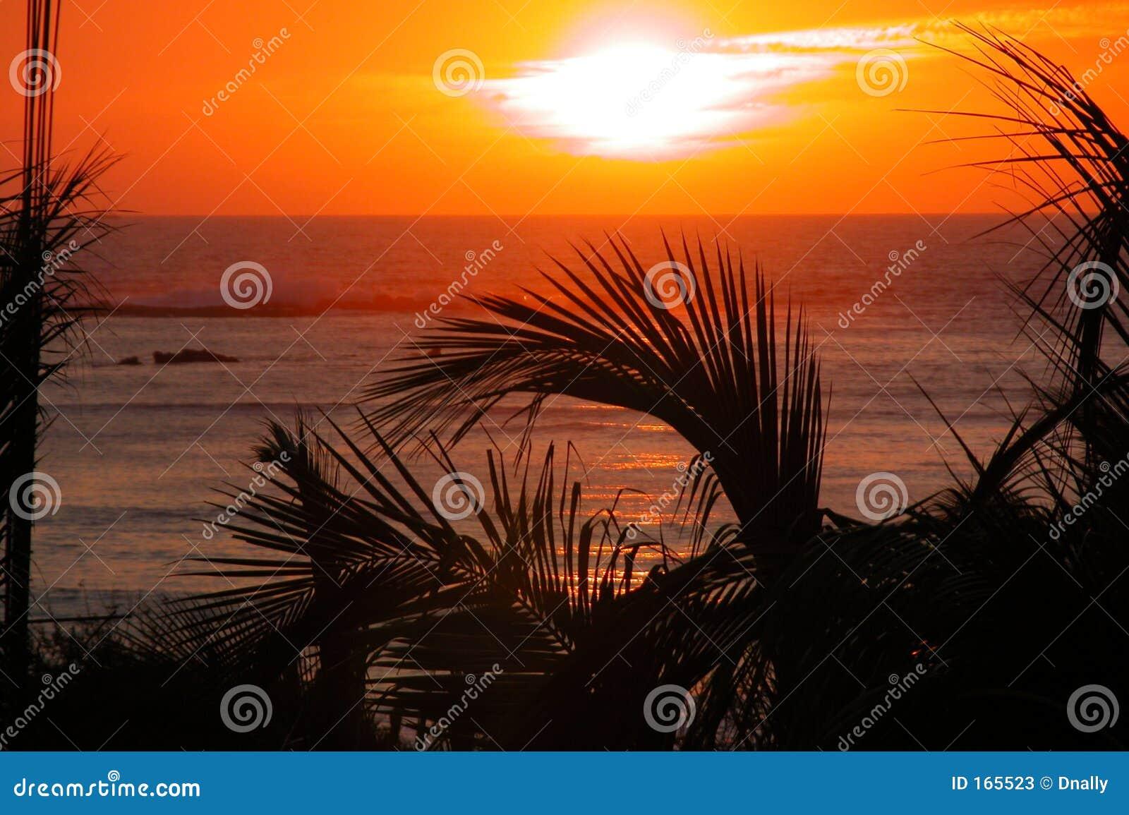 Puesta del sol tropical sobre el océano