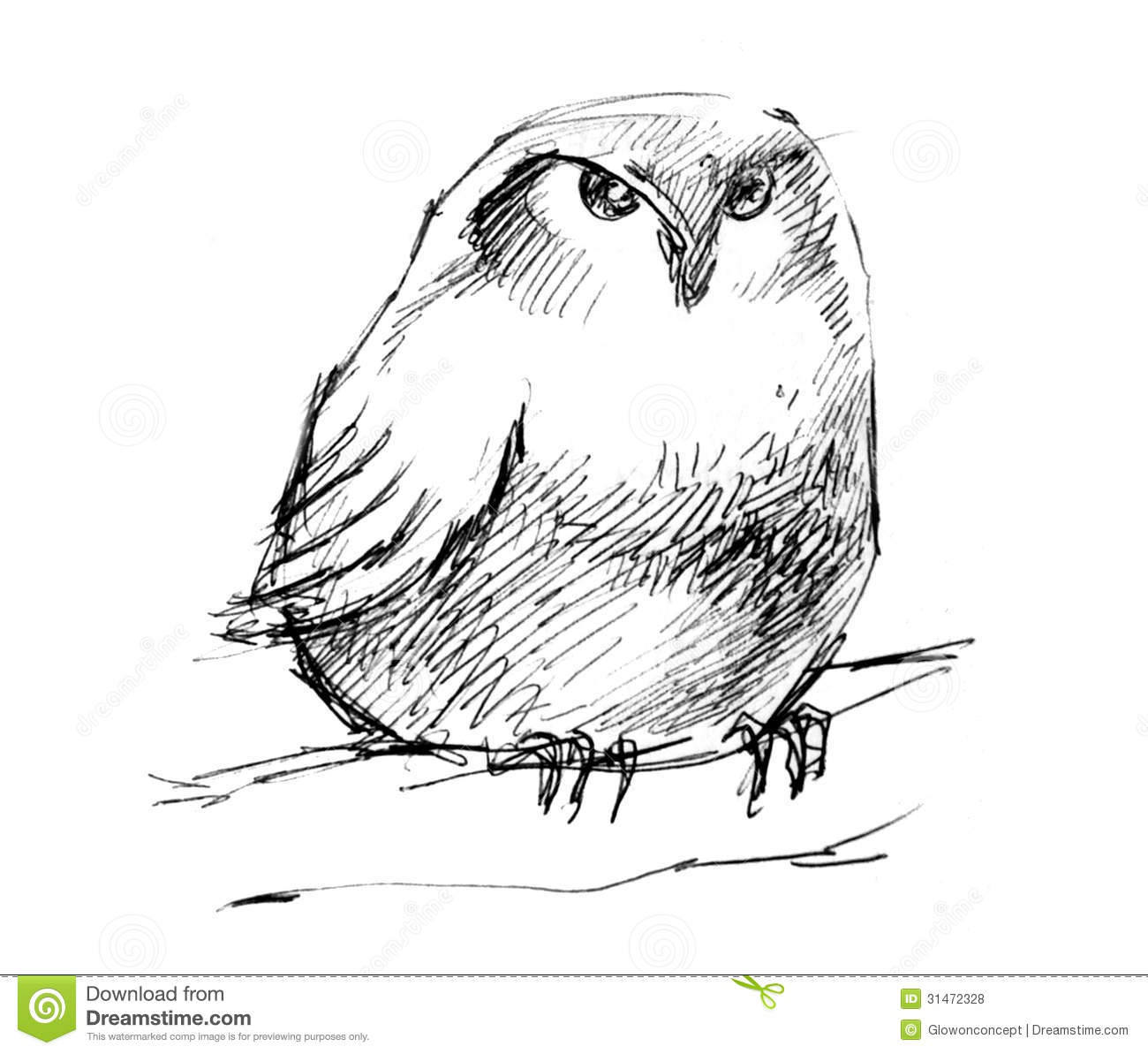 Puffy Owl Pencil Drawing Royalty Free Stock Photos - Image ...