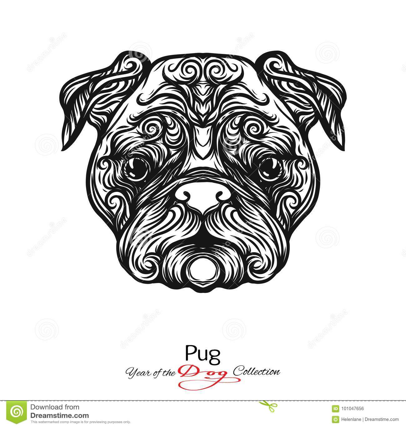 Disegno Cane Bianco E Nero.Pug Disegno Grafico In Bianco E Nero Di Un Cane