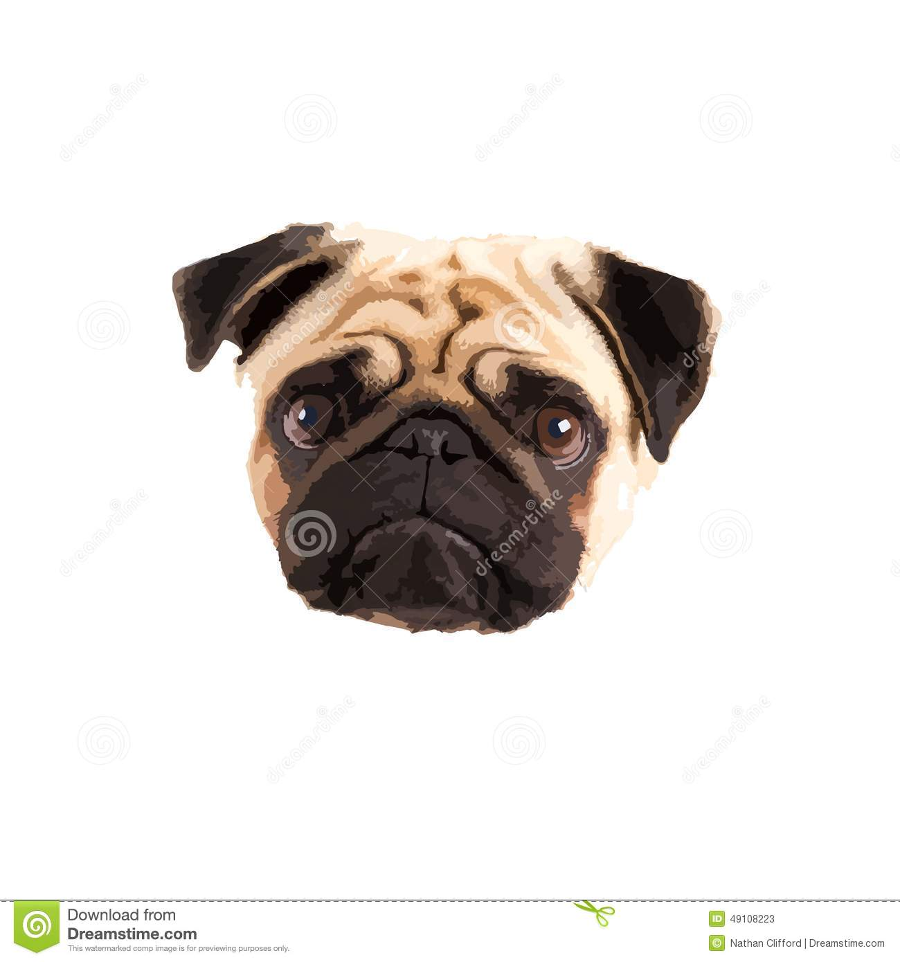 Pug Vector Stock Vector - Image: 49108223