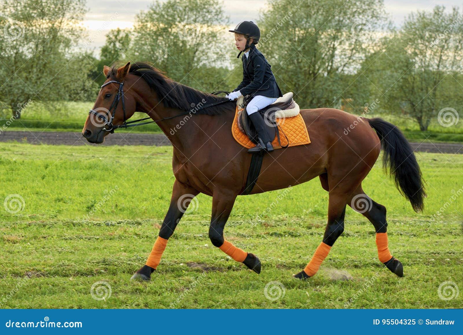 Puleggia tenditrice della bambina che monta un cavallo attraverso paese in attrezzatura professionale