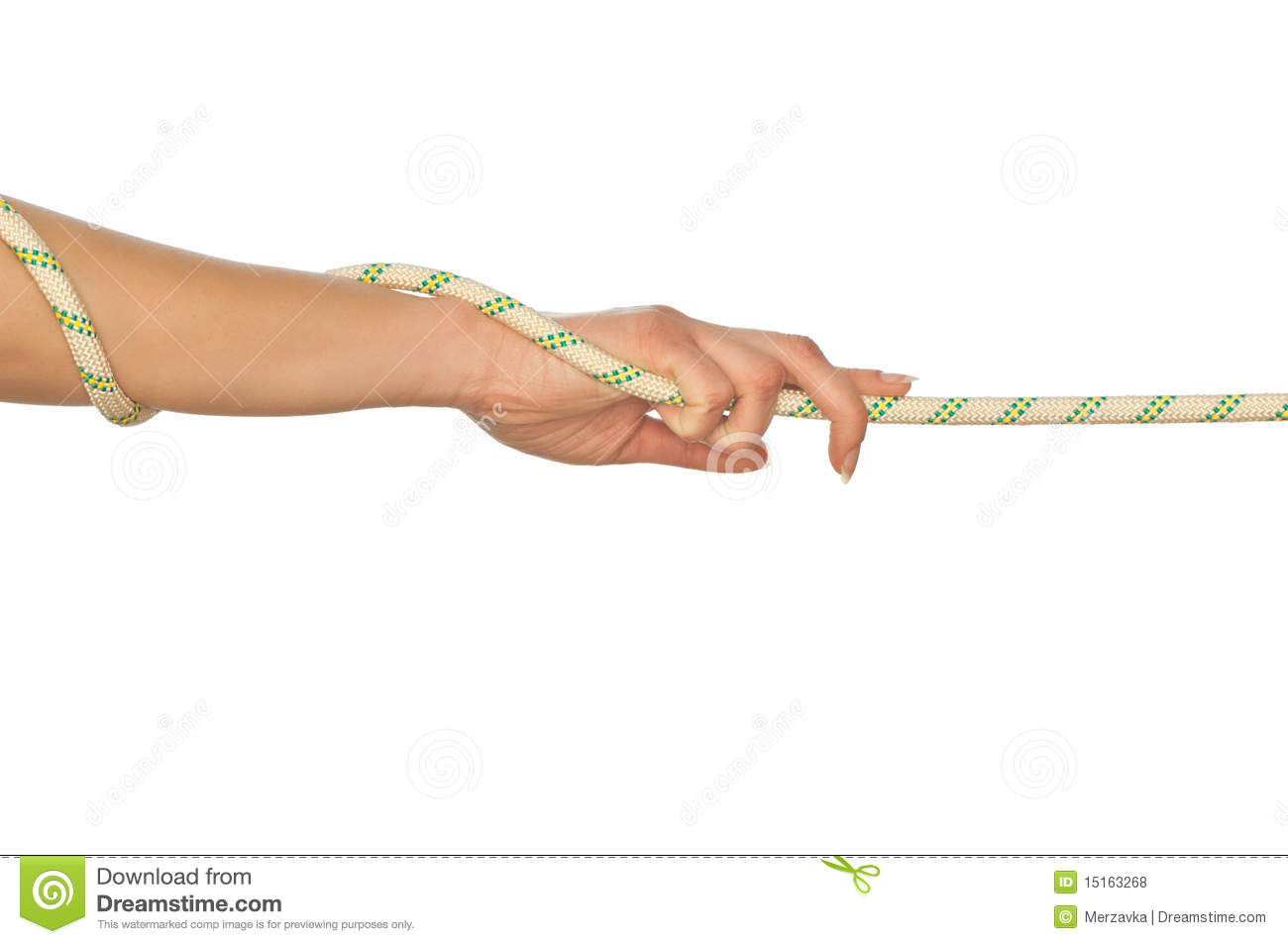 Pulling Of A Rope Roya...