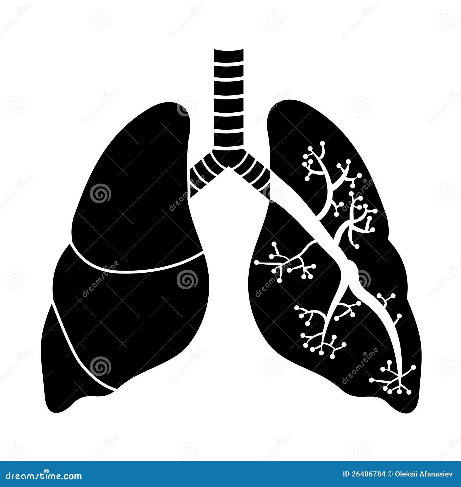 blanco negro de fumar
