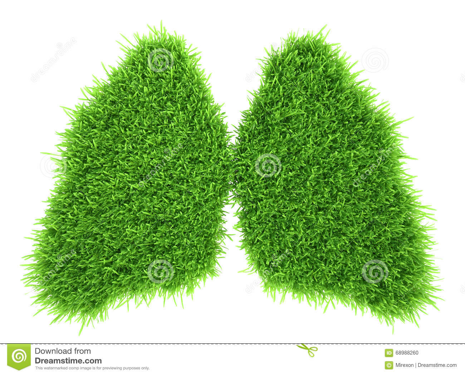 Pulmones humanos bajo la forma de hierba fresca verde