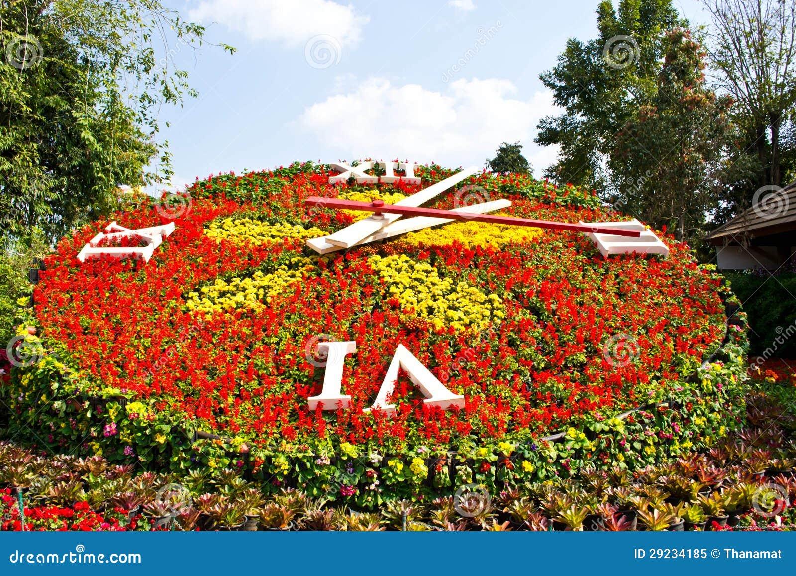 Download Pulso de disparo da flor imagem de stock. Imagem de decoração - 29234185