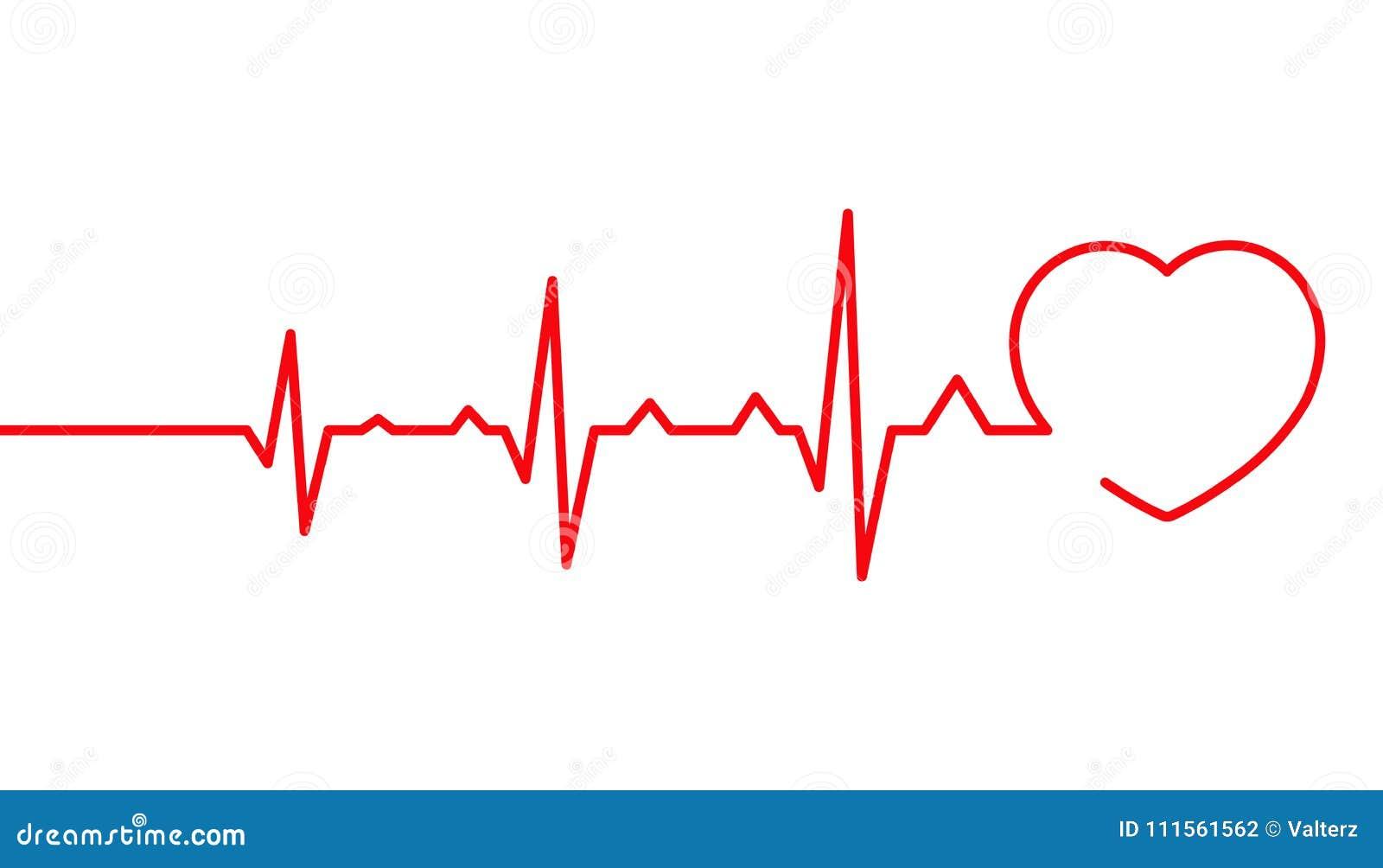 Pulso do coração, linha ilustração do cardiograma do vetor, pulsação do coração