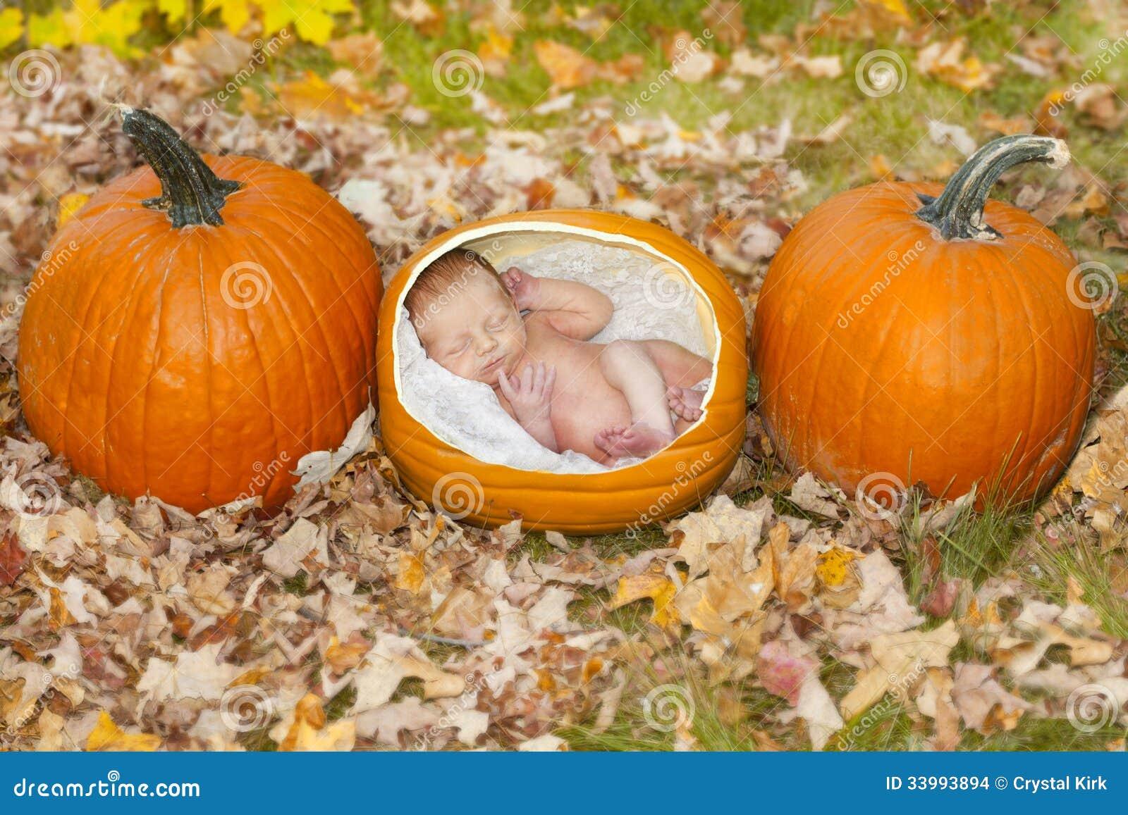 pumpkin baby stock images image 33993894. Black Bedroom Furniture Sets. Home Design Ideas