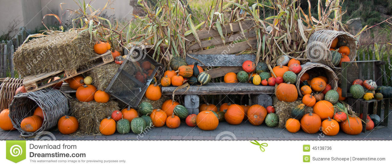 Pumpkin fall halloween decoration stock photo image for Deco exterieur halloween