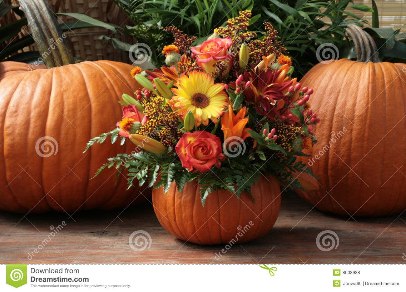 Pumpkin Floral Royalty Free Stock Photos Image 8008988