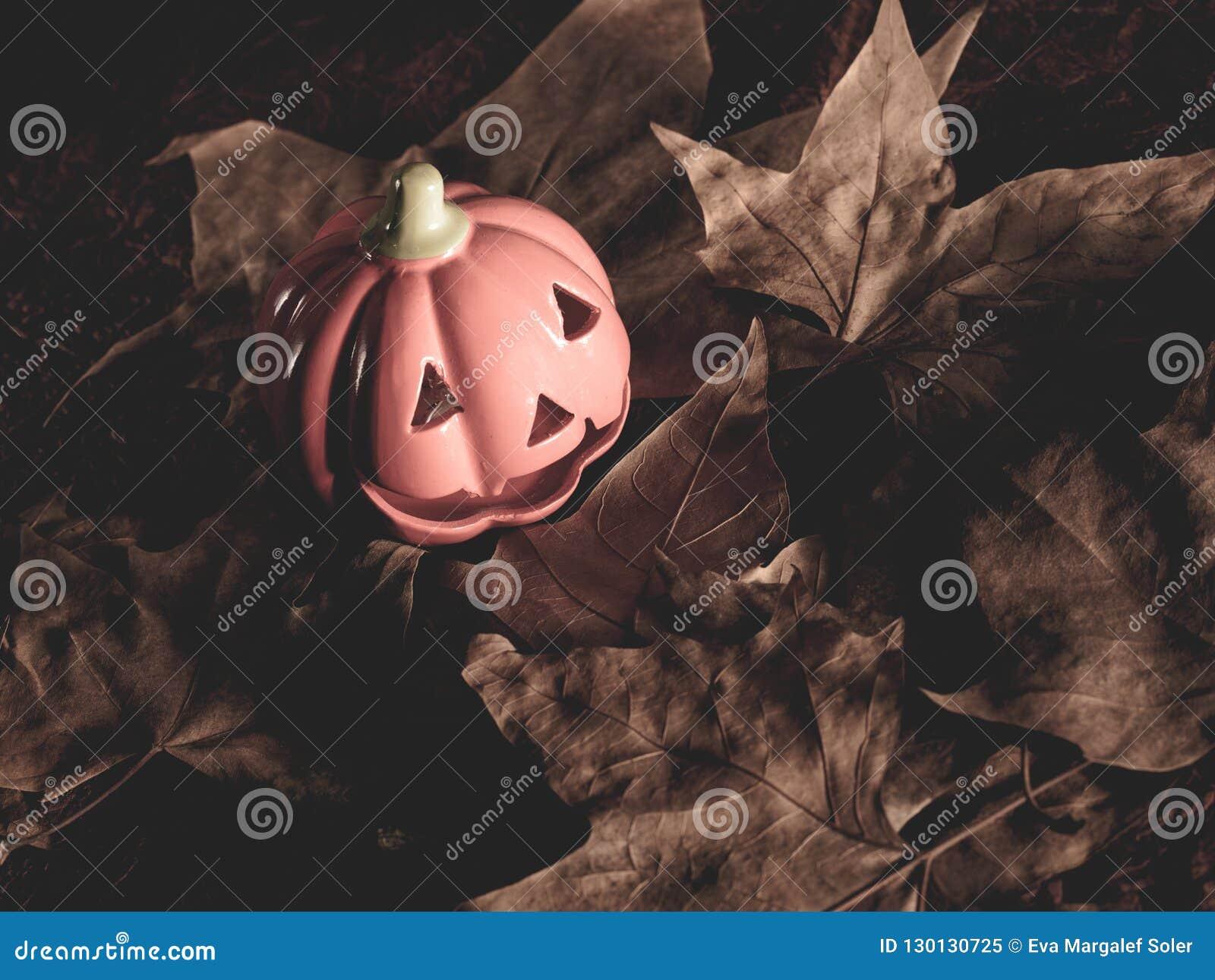 Halloween pumpkin background. fall parties