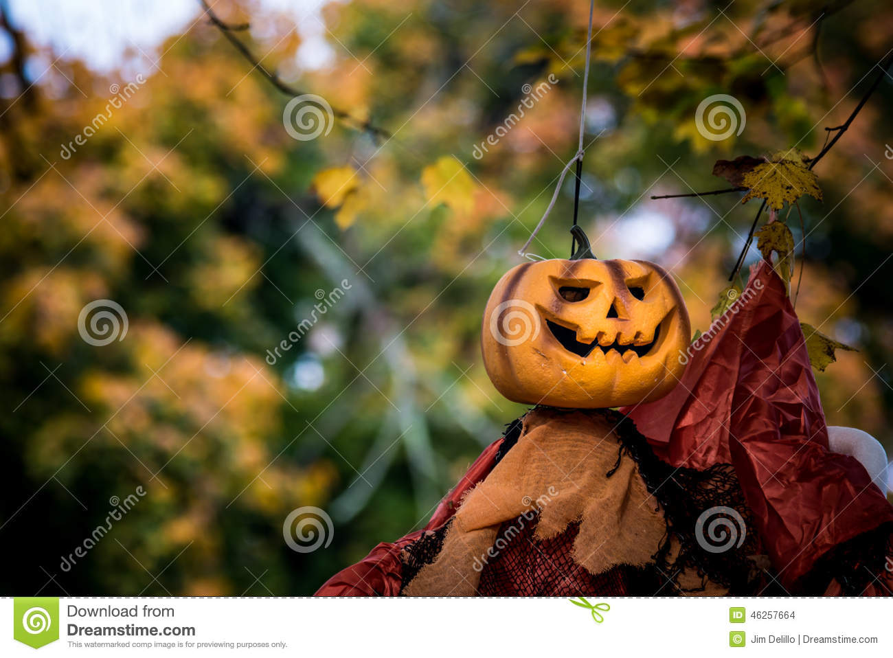 Pumpkin Head Halloween Decoration Stock Photo - Image: 46257664