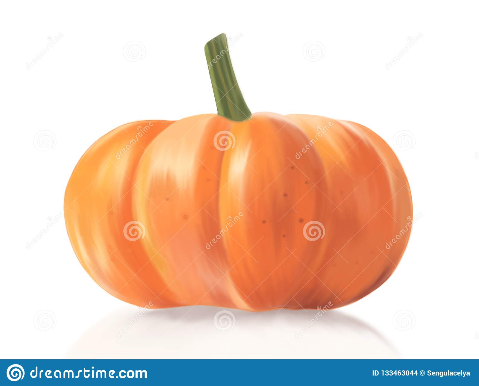 Pumpkin Illustration art