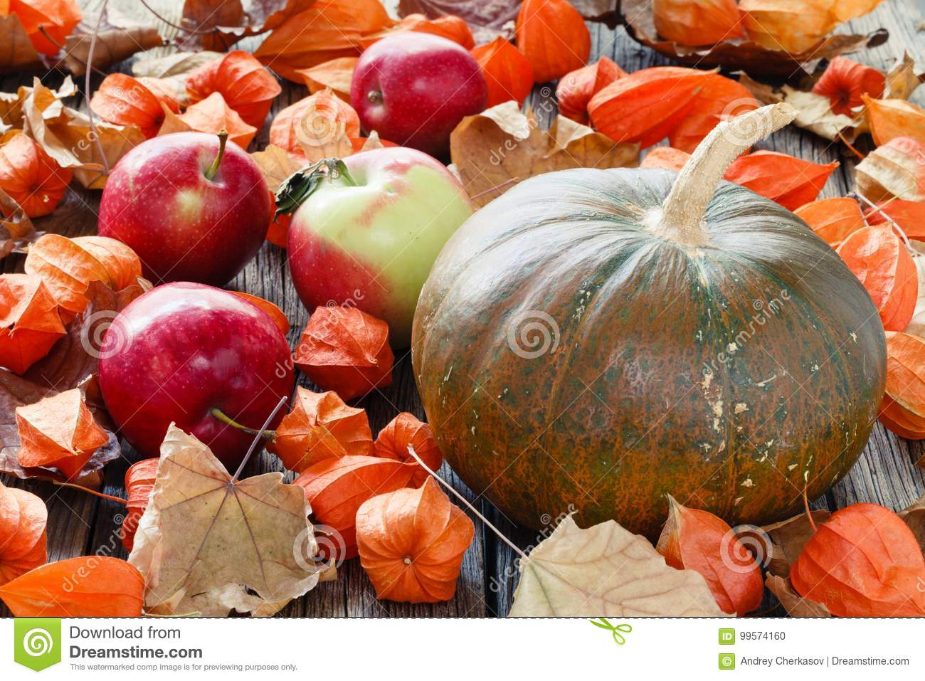 Pumpkin lay on fall leaf. Harvest and Thanksgiving day concept