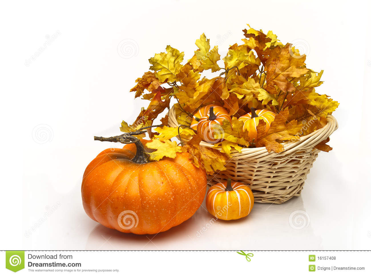 Pumpkin Near A Basket Of Leaves And Pumpkins Royalty Free