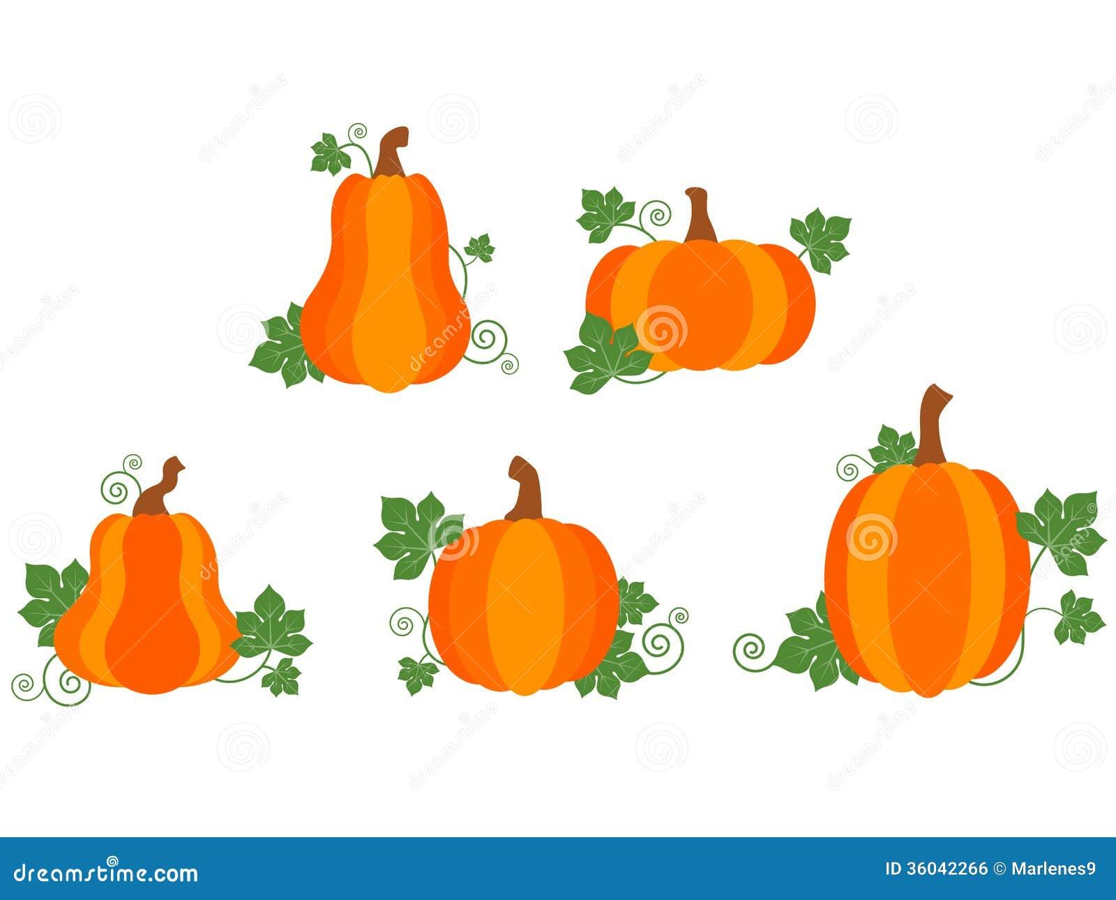 Pumpkin Patch stock vector. Illustration of pumpkin ...