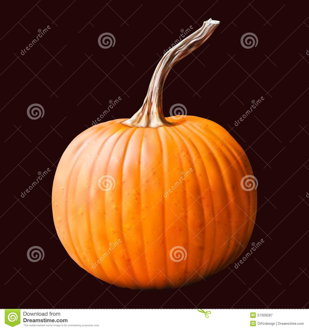 is a pumpkin a fruit or a vegetable fruit and water