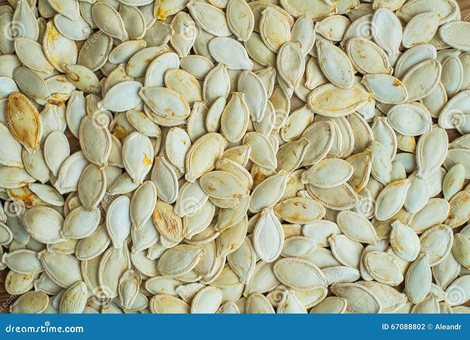 Pumpkin white seeds background