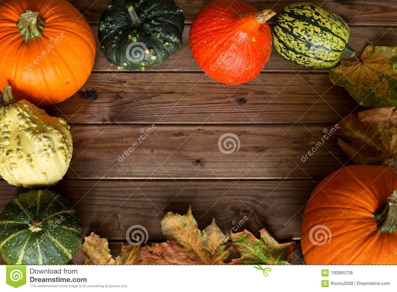 Pumpkins Different Types Good For Eat And Decorative With Place For