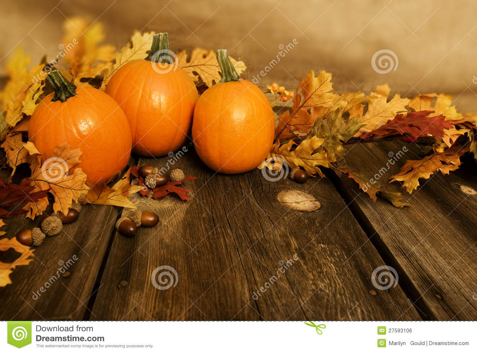 Pumpkins Fall Leaves