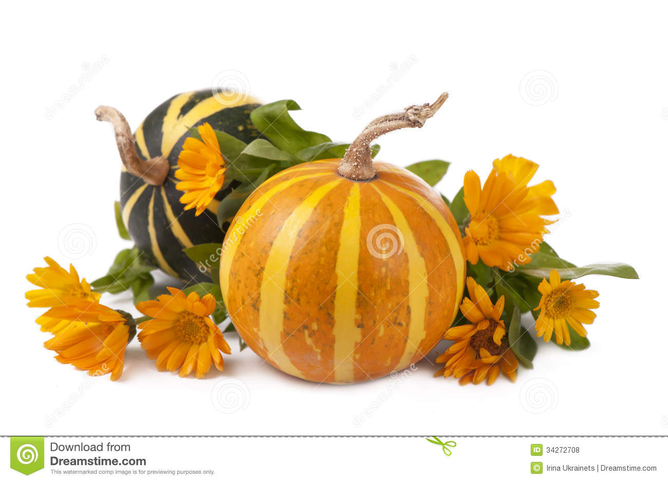 Pumpkins Royalty Free Stock Photos - Image: 34272708
