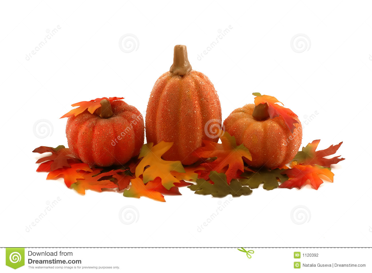 Pumpkins and leafs - Thanksgiving decoration
