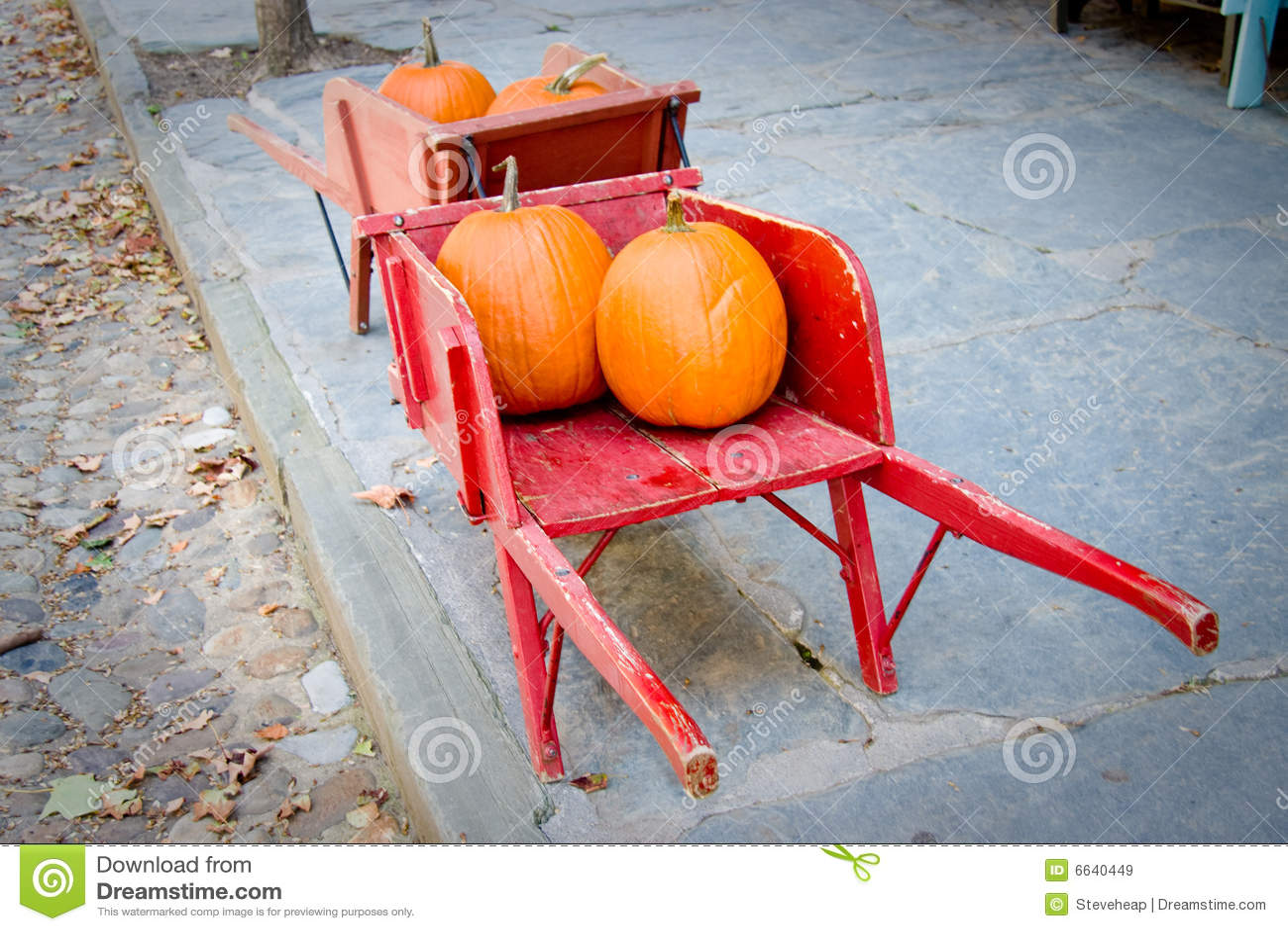 Pumpkins in red barrow