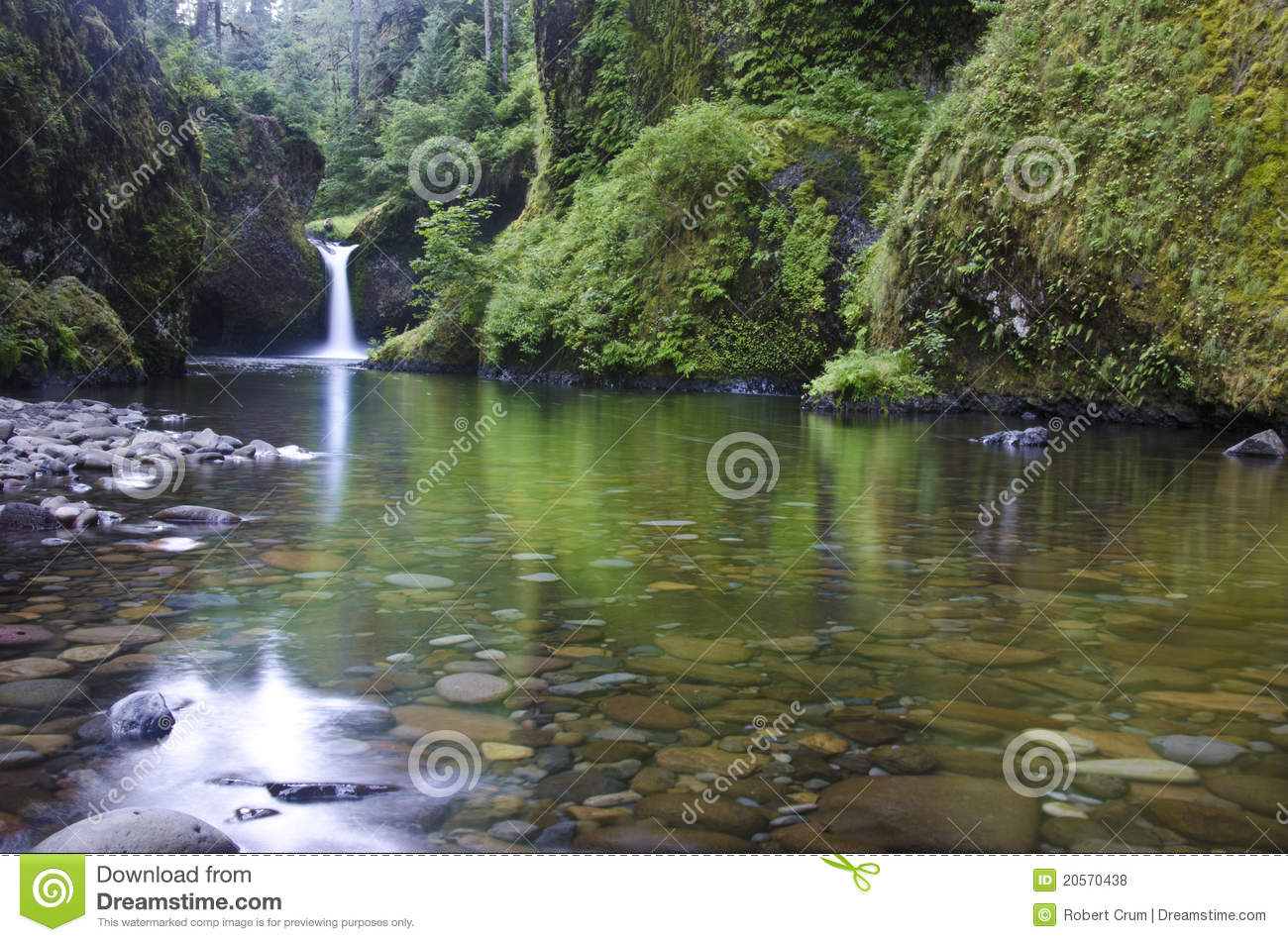 Punchbowl Falls, Columbia River Gorge Royalty Free Stock Photos