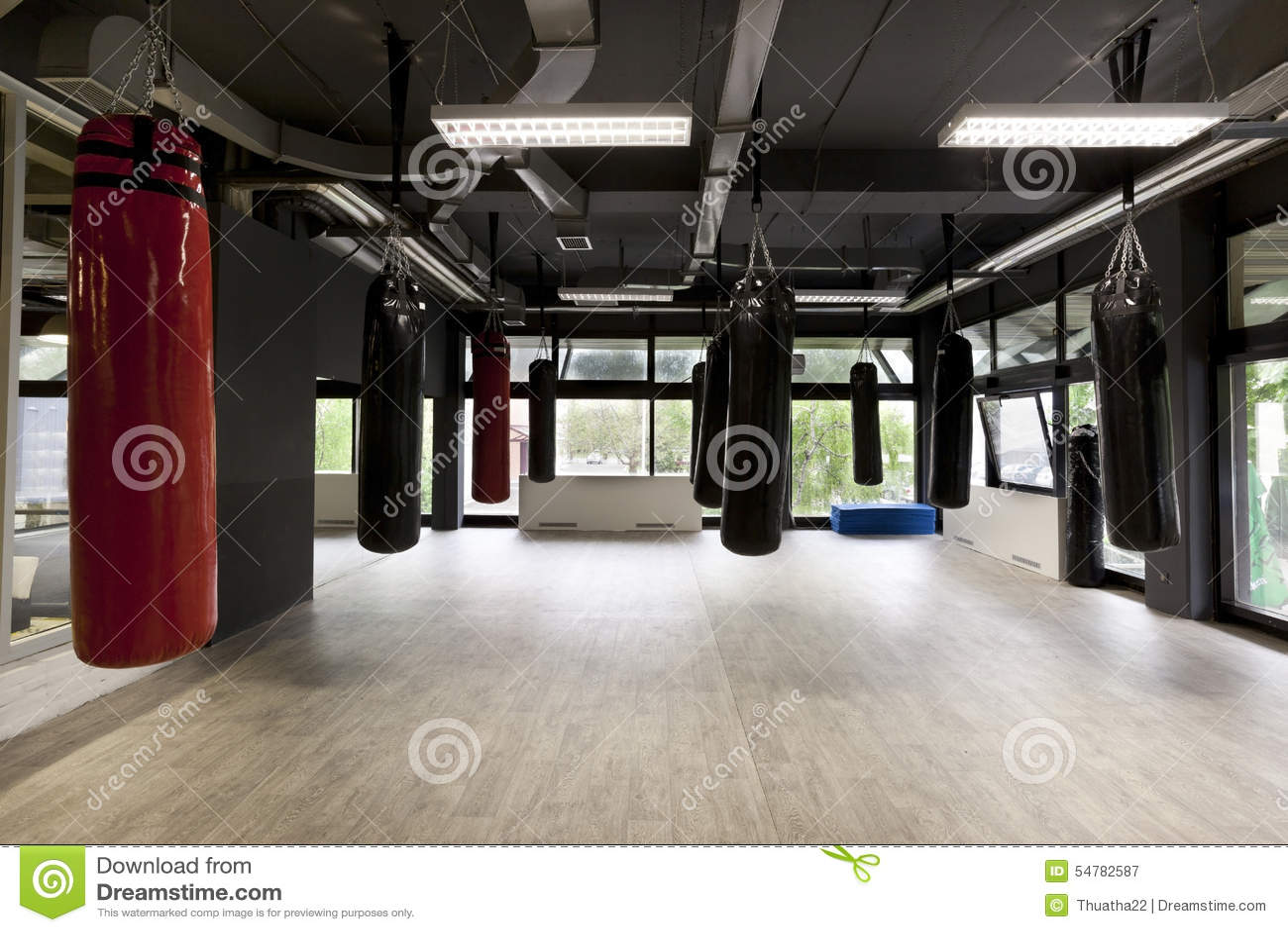 Punching Bags In Modern Gym
