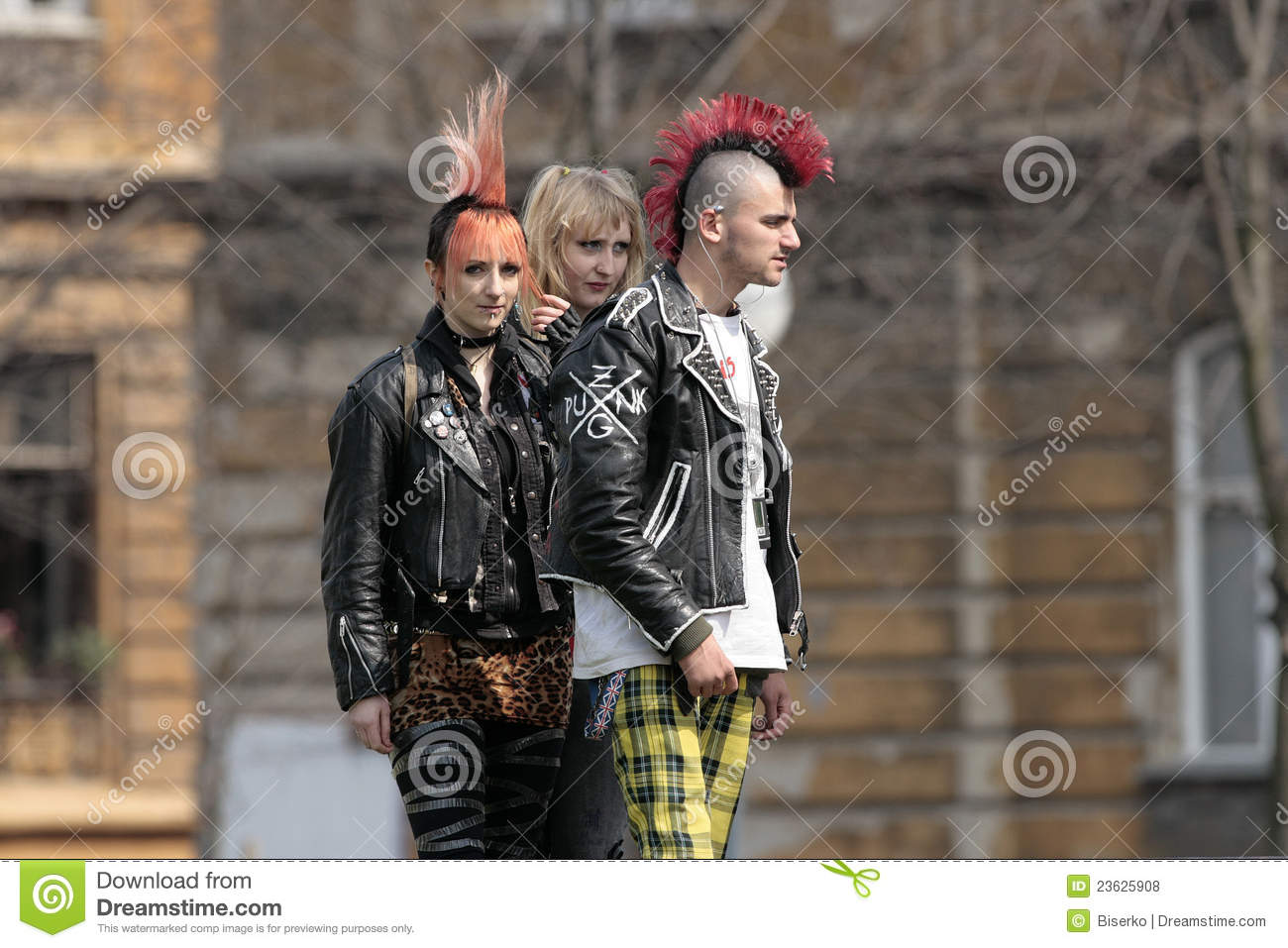 Punk Fashion Editorial Stock Photo Image Of Punk Spike